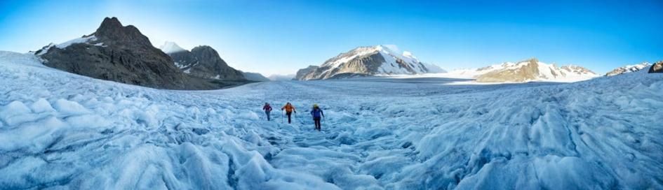 Az Alpokban található legnagyobb gleccser az Aletschgletcher. Valóságos jégtenger. Forrás: https://alpsinsight.com/